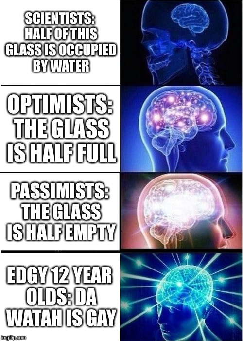 Expanding Brain Meme | SCIENTISTS: HALF OF THIS GLASS IS OCCUPIED BY WATER OPTIMISTS: THE GLASS IS HALF FULL PASSIMISTS: THE GLASS IS HALF EMPTY EDGY 12 YEAR OLDS: | image tagged in memes,expanding brain | made w/ Imgflip meme maker