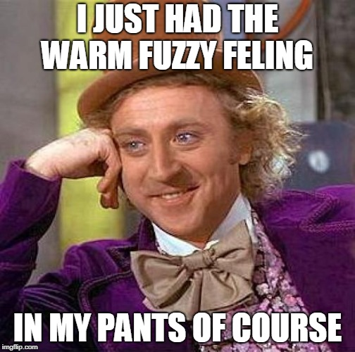 Creepy Condescending Wonka Meme | I JUST HAD THE WARM FUZZY FELING IN MY PANTS OF COURSE | image tagged in memes,creepy condescending wonka | made w/ Imgflip meme maker