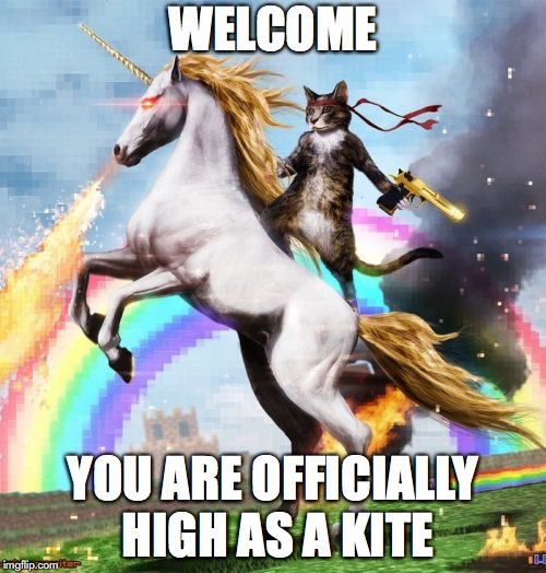 Welcome To The Internets Meme | WELCOME YOU ARE OFFICIALLY HIGH AS A KITE | image tagged in memes,welcome to the internets | made w/ Imgflip meme maker