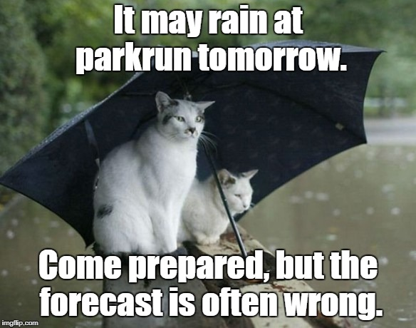 parkrun rain cats | It may rain at parkrun tomorrow. Come prepared, but the forecast is often wrong. | image tagged in cats in the rain,parkrun | made w/ Imgflip meme maker