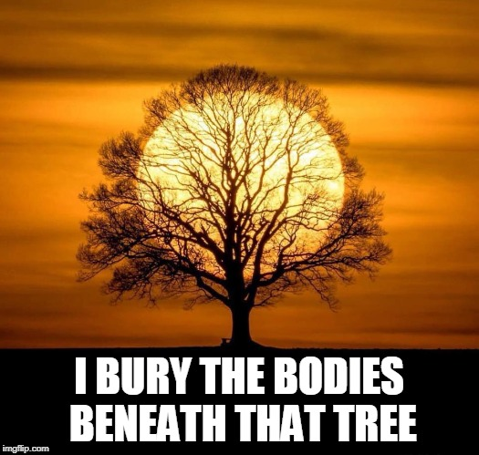 So Much For Inspirational | I BURY THE BODIES BENEATH THAT TREE | image tagged in memes,inspirational memes,sunshine,sun,trees | made w/ Imgflip meme maker