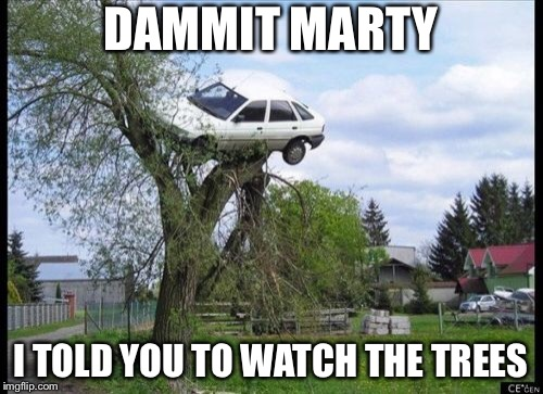 Secure Parking Meme | DAMMIT MARTY I TOLD YOU TO WATCH THE TREES | image tagged in memes,secure parking | made w/ Imgflip meme maker