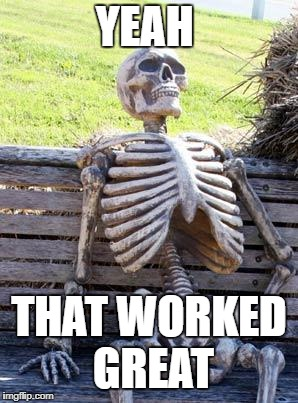Waiting Skeleton Meme | YEAH THAT WORKED GREAT | image tagged in memes,waiting skeleton | made w/ Imgflip meme maker