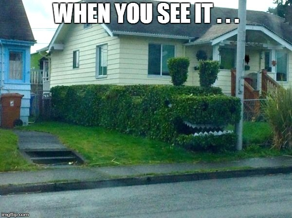 WHEN YOU SEE IT . . . | image tagged in funny,green | made w/ Imgflip meme maker
