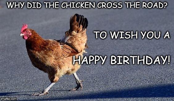 chicken birthday Image tagged in chicken,birthday,why did the chicken cross the  chicken birthday