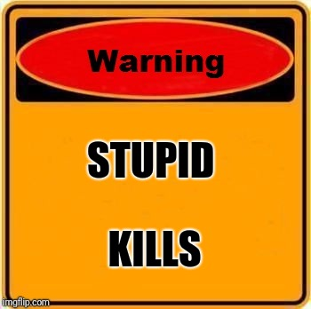 Warning Sign Meme | STUPID KILLS | image tagged in memes,warning sign | made w/ Imgflip meme maker