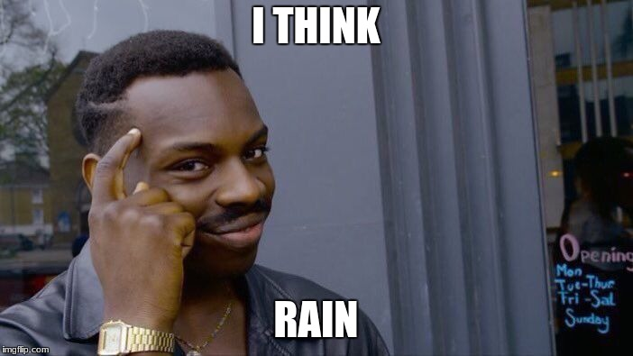 Roll Safe Think About It Meme | I THINK RAIN | image tagged in memes,roll safe think about it | made w/ Imgflip meme maker