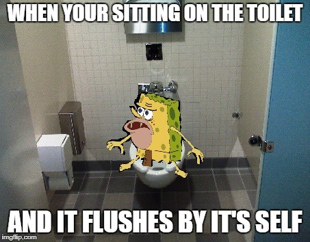 Spongegar | WHEN YOUR SITTING ON THE TOILET AND IT FLUSHES BY IT'S SELF | image tagged in toilet,spongegar | made w/ Imgflip meme maker