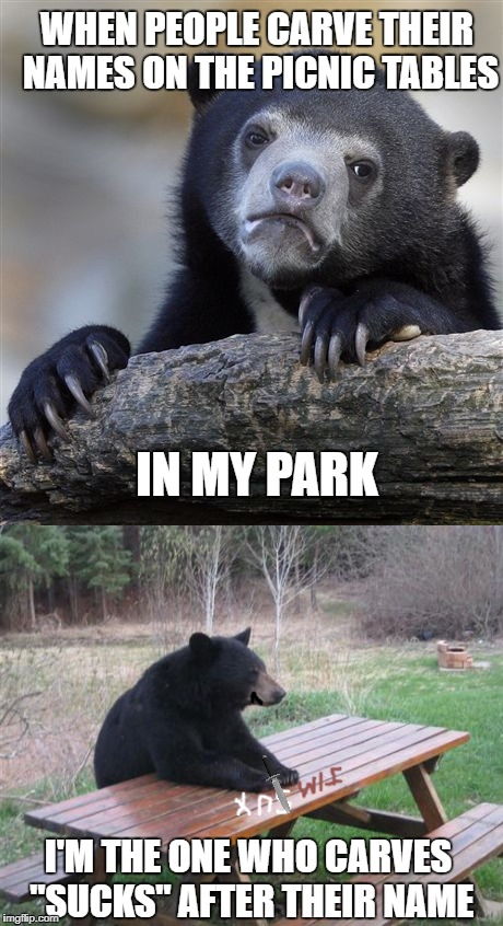 "Confession Bear graffiti  | WHEN PEOPLE CARVE THEIR NAMES ON THE PICNIC TABLES IN MY PARK I'M THE ONE WHO CARVES ""SUCKS"" AFTER THEIR NAME 