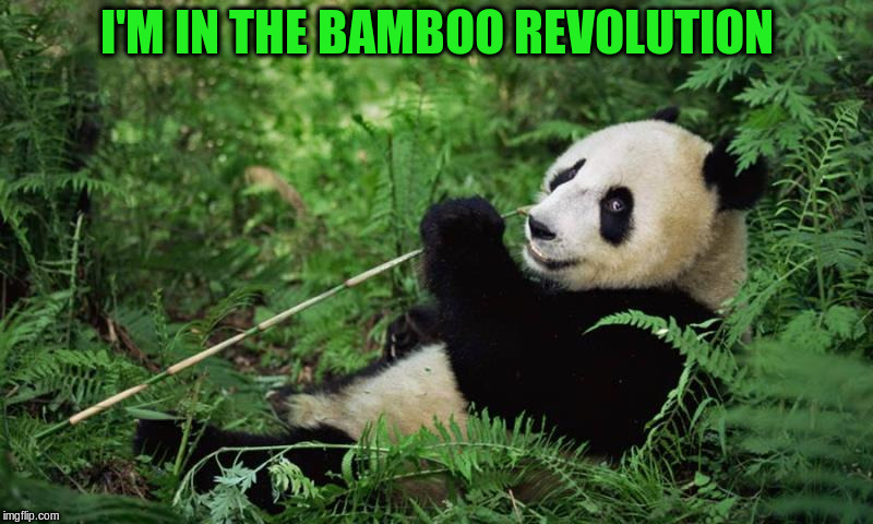 Bamboo Revolution | I'M IN THE BAMBOO REVOLUTION | image tagged in bamboo,panda | made w/ Imgflip meme maker