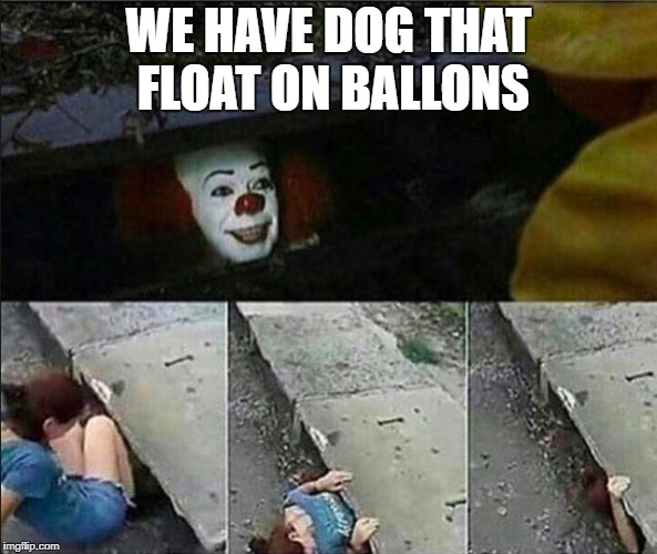 WE HAVE DOG THAT FLOAT ON BALLONS | made w/ Imgflip meme maker