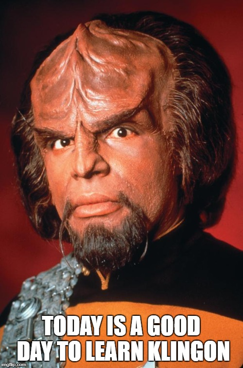 Lieutenant Worf |  TODAY IS A GOOD DAY TO LEARN KLINGON | image tagged in lieutenant worf | made w/ Imgflip meme maker