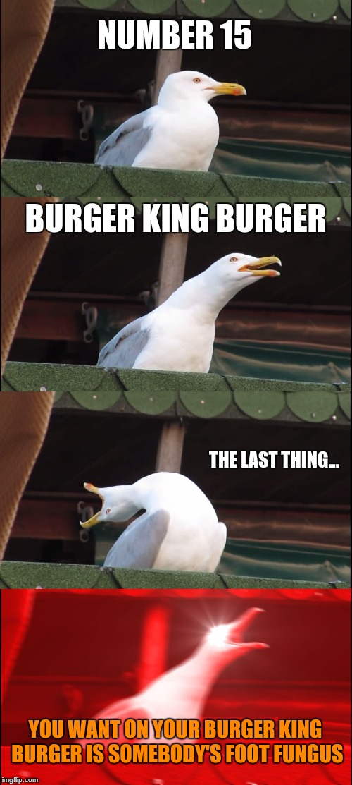 *Insert nasal voice here* | NUMBER 15 BURGER KING BURGER THE LAST THING... YOU WANT ON YOUR BURGER KING BURGER IS SOMEBODY'S FOOT FUNGUS | image tagged in memes,inhaling seagull,burger king,lettuce,funny | made w/ Imgflip meme maker