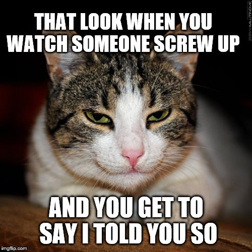 I told you so  |  THAT LOOK WHEN YOU WATCH SOMEONE SCREW UP; AND YOU GET TO SAY I TOLD YOU SO | image tagged in cat smile,i told you so,funny cat memes | made w/ Imgflip meme maker