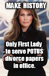 MAKE  HISTORY Only First Lady to serve POTUS divorce papers in office. | image tagged in melania,first lady,stormy daniels,trump,trump divorce | made w/ Imgflip meme maker