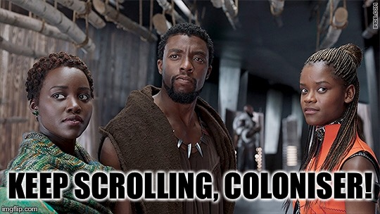 KEEP SCROLLING, COLONISER! | image tagged in memes,black panther | made w/ Imgflip meme maker