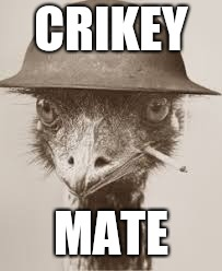 CRIKEY MATE | made w/ Imgflip meme maker