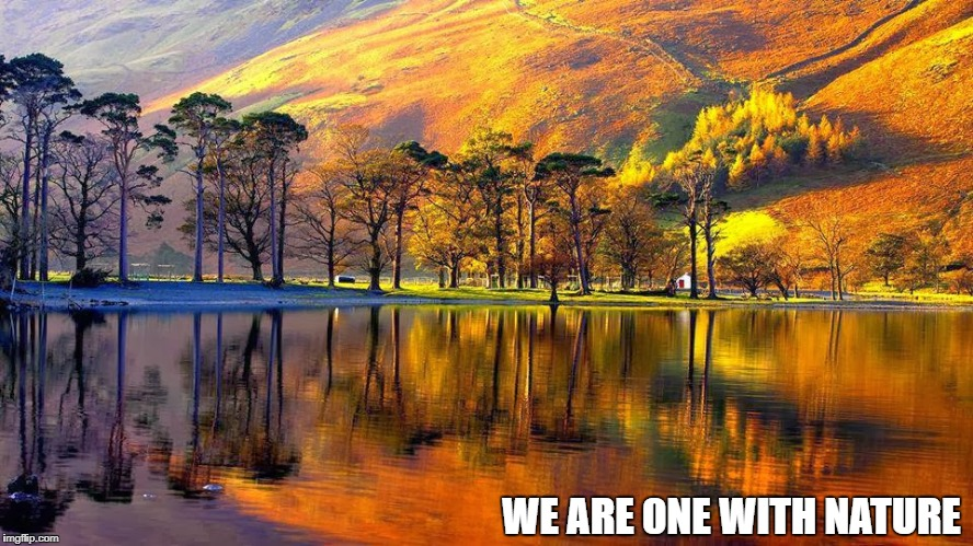 Nature | WE ARE 0NE WITH NATURE | image tagged in memes | made w/ Imgflip meme maker