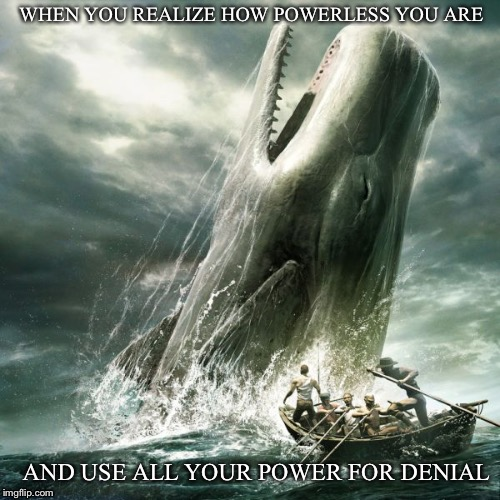 WHEN YOU REALIZE HOW POWERLESS YOU ARE AND USE ALL YOUR POWER FOR DENIAL | image tagged in moby dick | made w/ Imgflip meme maker