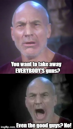 Even the GOOD guys? | You want to take away   EVERYBODY'S guns? Even the good guys? No! | image tagged in picard wtf | made w/ Imgflip meme maker