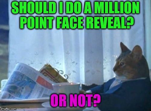 I was thinking maybe a half-reveal at 500k then my actual face at 1mil, but idk... | SHOULD I DO A MILLION POINT FACE REVEAL? OR NOT? | image tagged in should i cat,face reveal | made w/ Imgflip meme maker