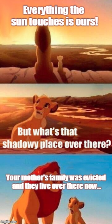 Simba Shadowy Place Meme | Everything the sun touches is ours! Your mother's family was evicted and they live over there now... | image tagged in memes,simba shadowy place | made w/ Imgflip meme maker