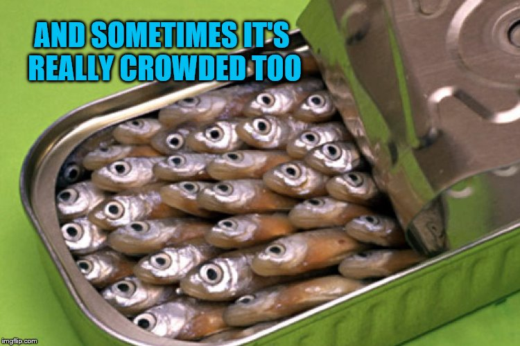 AND SOMETIMES IT'S REALLY CROWDED TOO | made w/ Imgflip meme maker