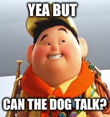 Russell | YEA BUT CAN THE DOG TALK? | image tagged in russell | made w/ Imgflip meme maker