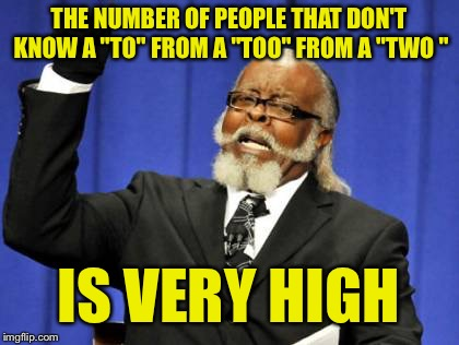 "Too Damn High Meme | THE NUMBER OF PEOPLE THAT DON'T KNOW A ""TO"" FROM A ""TOO"" FROM A ""TWO "" IS VERY HIGH 