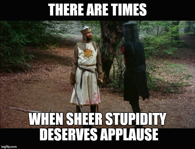 THERE ARE TIMES WHEN SHEER STUPIDITY DESERVES APPLAUSE | image tagged in 'tis but a scratch monty python | made w/ Imgflip meme maker
