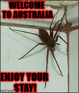 WELCOME TO AUSTRALIA ENJOY YOUR STAY! | image tagged in australia | made w/ Imgflip meme maker