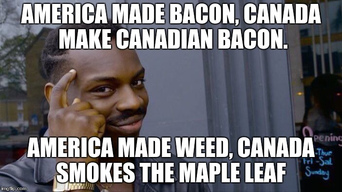Roll Safe Think About It Meme | AMERICA MADE BACON, CANADA MAKE CANADIAN BACON. AMERICA MADE WEED, CANADA SMOKES THE MAPLE LEAF | image tagged in memes,roll safe think about it | made w/ Imgflip meme maker