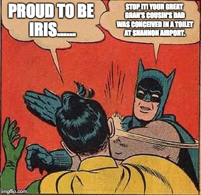 Batman Slapping Robin Meme | PROUD TO BE IRIS...... STOP IT! YOUR GREAT GRAN'S COUSIN'S DAD WAS CONCEIVED IN A TOILET AT SHANNON AIRPORT. | image tagged in memes,batman slapping robin | made w/ Imgflip meme maker