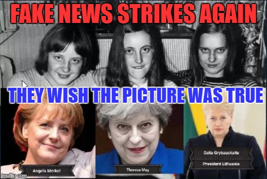 Fake news strikes again |  FAKE NEWS STRIKES AGAIN; THEY WISH THE PICTURE WAS TRUE | image tagged in angela merkel,theresa may,fake news,funny memes | made w/ Imgflip meme maker