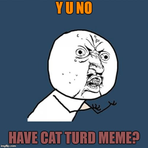 Y U No Meme | Y U NO HAVE CAT TURD MEME? | image tagged in memes,y u no | made w/ Imgflip meme maker