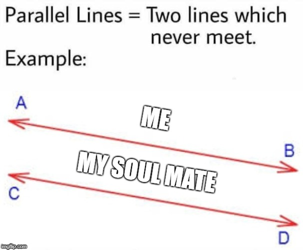 ME MY SOUL MATE | image tagged in parallel lines | made w/ Imgflip meme maker