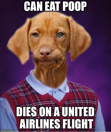 Bad Luck Raydog | CAN EAT POOP DIES ON A UNITED AIRLINES FLIGHT | image tagged in bad luck raydog | made w/ Imgflip meme maker