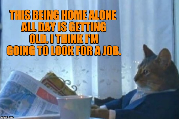 THIS BEING HOME ALONE ALL DAY IS GETTING OLD. I THINK I'M GOING TO LOOK FOR A JOB. | made w/ Imgflip meme maker