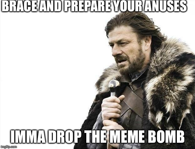 Brace Yourselves X is Coming Meme | BRACE AND PREPARE YOUR ANUSES IMMA DROP THE MEME BOMB | image tagged in memes,brace yourselves x is coming | made w/ Imgflip meme maker