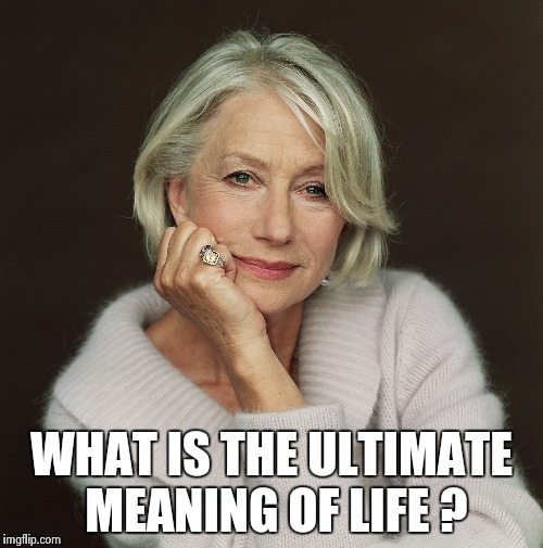 Helen Mirren | WHAT IS THE ULTIMATE MEANING OF LIFE ? | image tagged in helen mirren | made w/ Imgflip meme maker