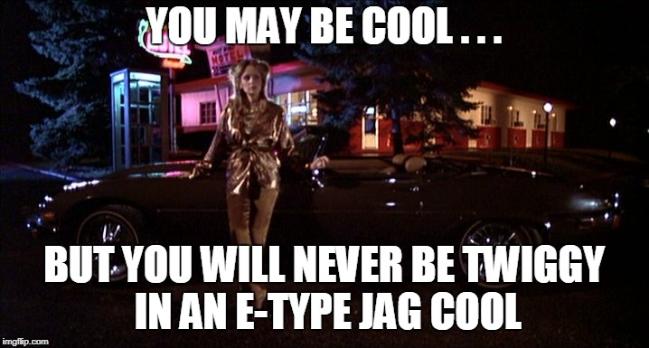 Twiggy cool | YOU MAY BE COOL . . . BUT YOU WILL NEVER BE TWIGGY IN AN E-TYPE JAG COOL | image tagged in disaster girl | made w/ Imgflip meme maker