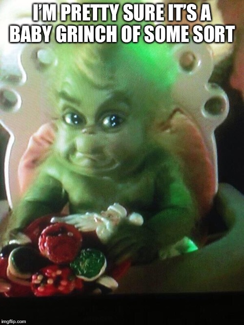 I'M PRETTY SURE IT'S A BABY GRINCH OF SOME SORT | made w/ Imgflip meme maker