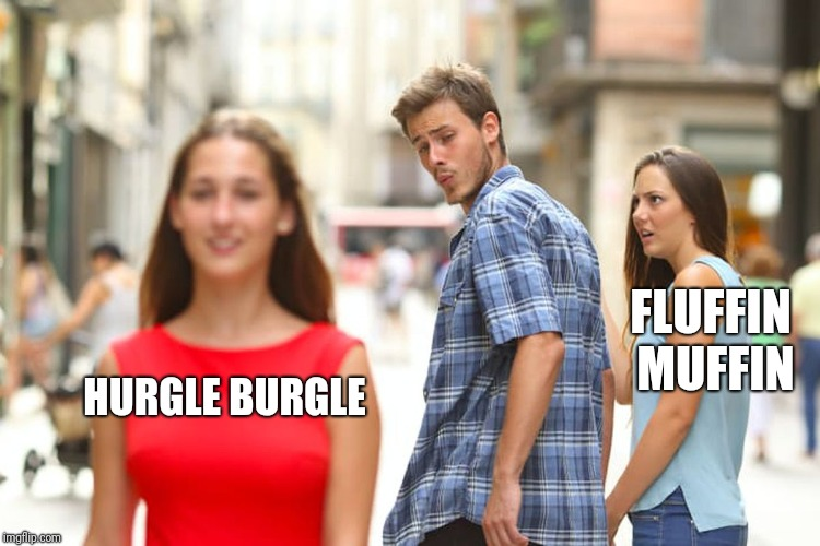 Distracted Boyfriend Meme | HURGLE BURGLE FLUFFIN MUFFIN | image tagged in memes,distracted boyfriend | made w/ Imgflip meme maker