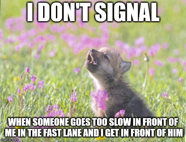 Baby Insanity Wolf Meme | I DON'T SIGNAL WHEN SOMEONE GOES TOO SLOW IN FRONT OF ME IN THE FAST LANE AND I GET IN FRONT OF HIM | image tagged in memes,baby insanity wolf,AdviceAnimals | made w/ Imgflip meme maker