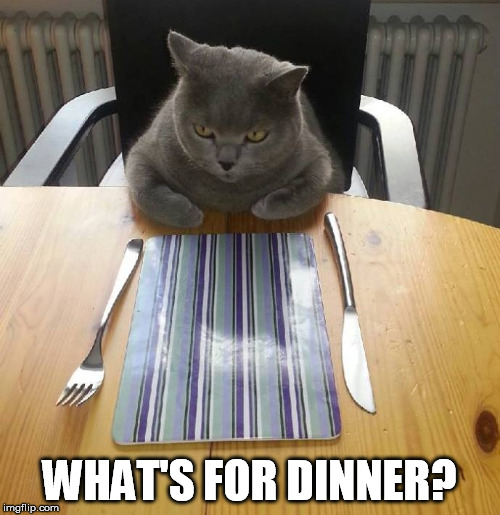 WHAT'S FOR DINNER? | made w/ Imgflip meme maker