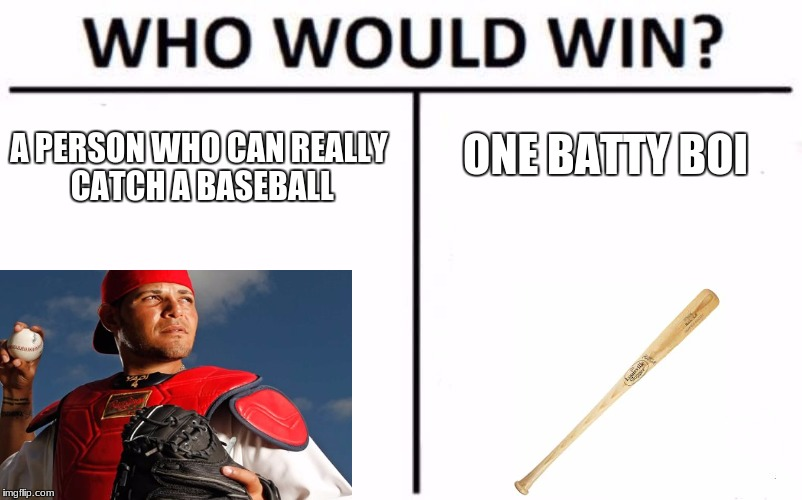 Who Would Win? Meme | A PERSON WHO CAN REALLY CATCH A BASEBALL ONE BATTY BOI | image tagged in memes,who would win | made w/ Imgflip meme maker
