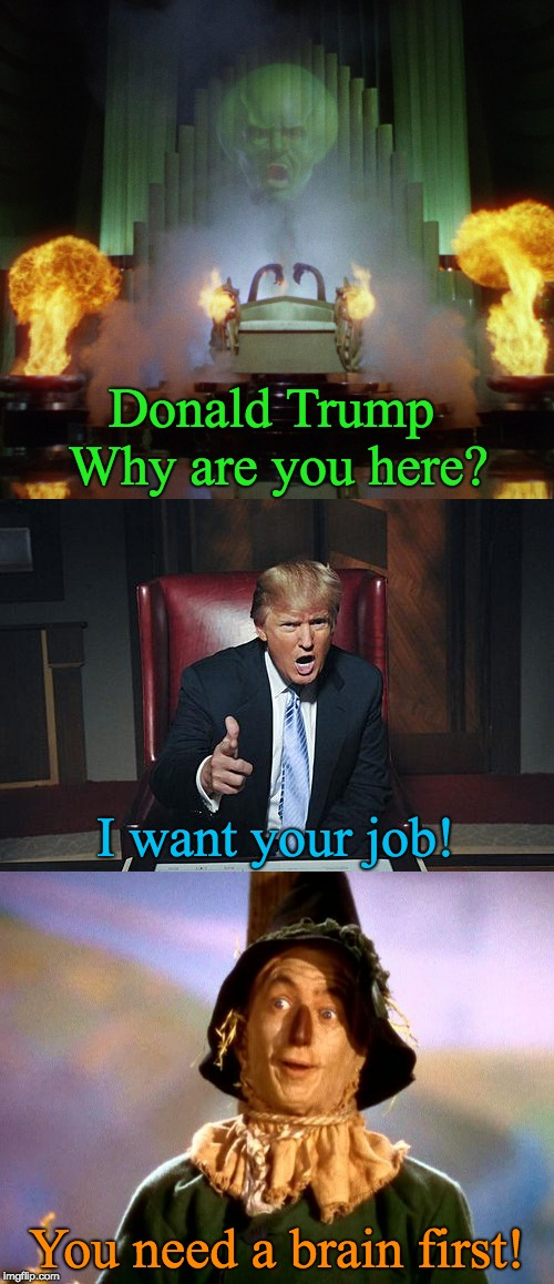 Trump in Oz - needs BRAIN | Donald Trump Why are you here? You need a brain first! I want your job! | image tagged in trump,oz,wizard of oz,scarecrow,brain,needs a brain | made w/ Imgflip meme maker