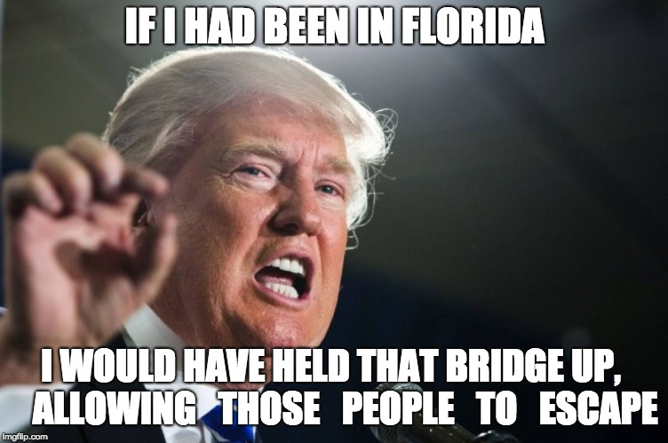 donald trump | IF I HAD BEEN IN FLORIDA I WOULD HAVE HELD THAT BRIDGE UP,    ALLOWING   THOSE   PEOPLE   TO   ESCAPE | image tagged in donald trump | made w/ Imgflip meme maker
