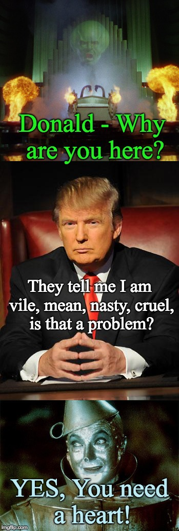 Trump needs heart from OZ | Donald - Why are you here? YES, You need a heart! They tell me I am vile, mean, nasty, cruel, is that a problem? | image tagged in trump,wizard of oz,tin man,trump mean,trump vile,heartless | made w/ Imgflip meme maker