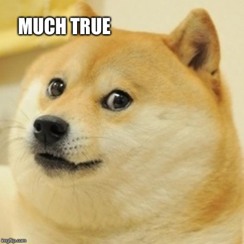 Doge Meme | MUCH TRUE | image tagged in memes,doge | made w/ Imgflip meme maker